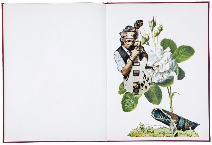 »ewig oder der zauber der rose« 40cm x 30,5cm 2015