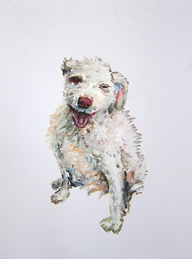 »Ein Hund« Öl/Papier 50cm x 34cm 2015